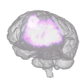 brainviz emotiv brain scan visualization