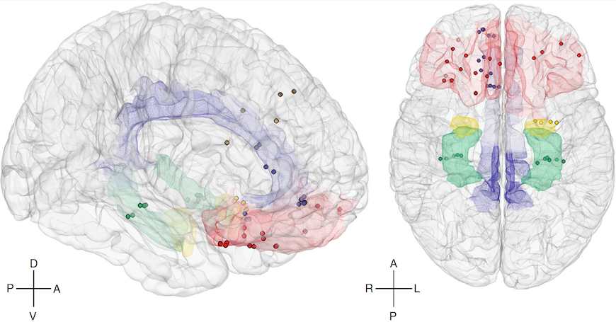 Computational Neuroscience Diagram depicts neural modeling of the human brain and various parts of the brain showing emotions.